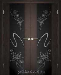 Двойные двери межкомнатные с черным стеклом.